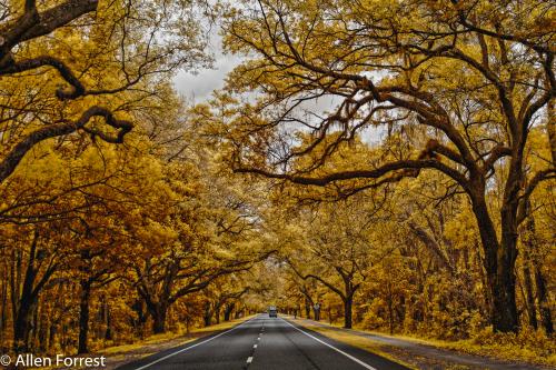 J.C. Penney Memorial Scenic Highway