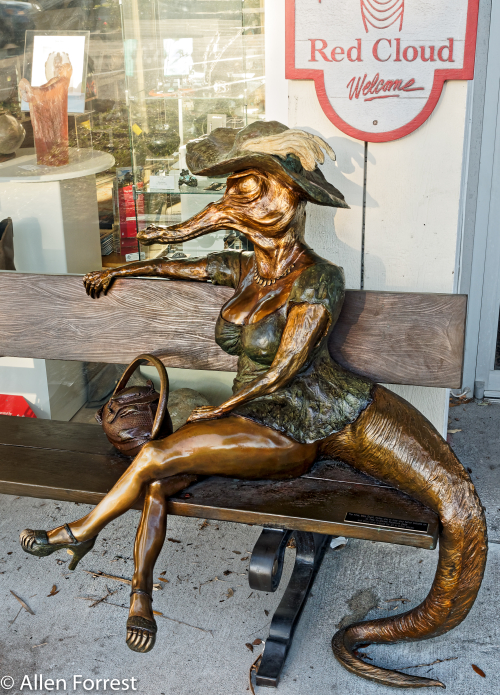 Miz Alligator sits on her bench outside Red Cloud Indian Arts Store, St. Petersburg, Florida